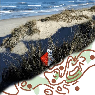sand-dunes training camp